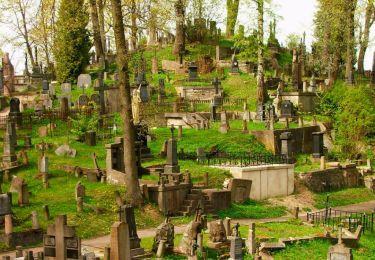 Rasos cemetery, 1 km