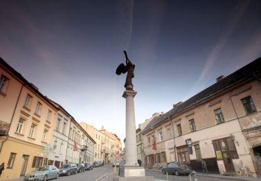 Angel of Užupis, 1,2 km