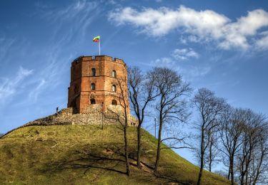 Tower of Castle of Gediminas, 1,5 km